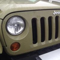 Jeep Wrangler Commando Sighting