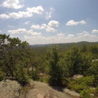 Norvin Green State Forest: Otter Hole to Carris Hill Hike