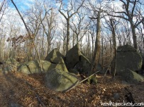 Devil's Half Acre Hike - Sourland Mountain Preserve