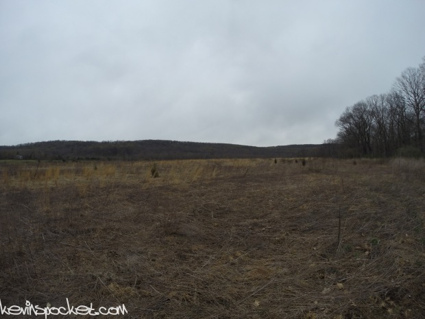 Fiddler's Creek Preserve