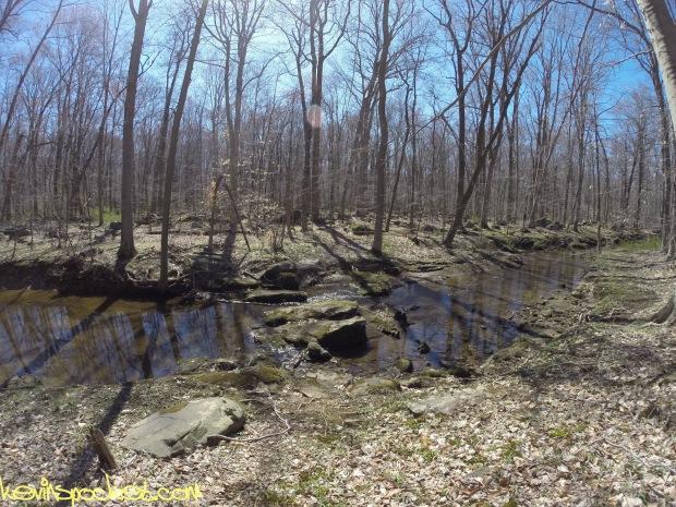 Sourland Ecosystem Preserve