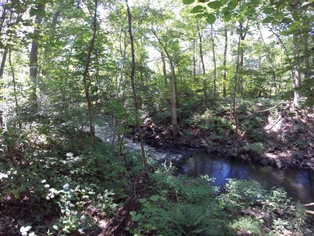 Black River Park - Cooper Mil