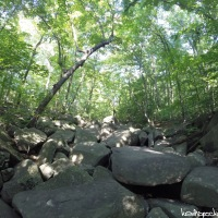 Hike 32: Sourland Mountain Preserve - Roaring Rocks
