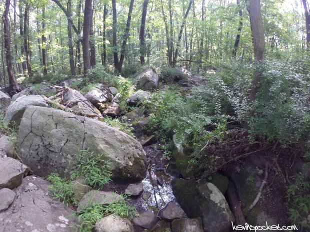 Sourland Mountain Preserve - Roaring Rocks