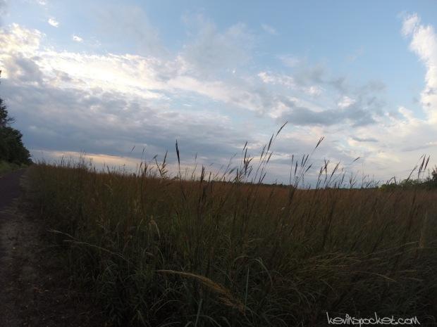 Negri-Nepote Native Grassland Preserve