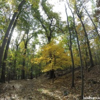 Hike 42: Eagle Rock Reservation