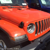 Punk'n JL Wrangler Sahara spotted with color match top